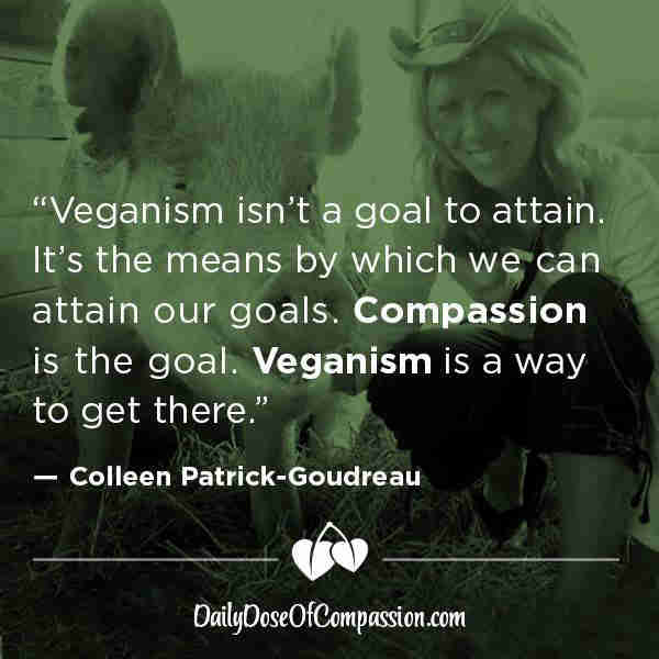 Daily Dose of Compassion
